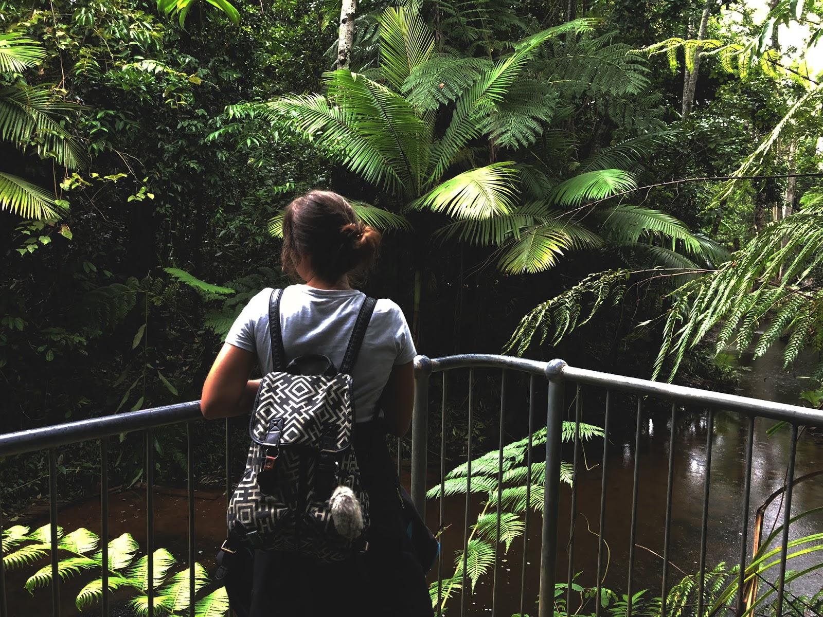 Punkt widokowy w środku dżungli w australijskim miasteczku Mission Beach. Podróżniczka stoi tyłem, a przed nią rozpościera się australijski las deszczowy.