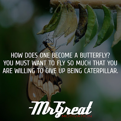 How does one become a butterfly? You must want to fly so much that you are willing to give up being a caterpillar - Trina Paulus