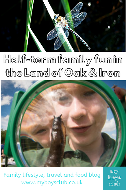 Half-term family fun in the Land of Oak & Iron derwent valley