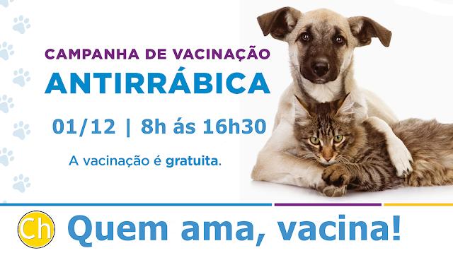 Secretaria de Saúde realiza campanha de vacinação antirrábica em Chaval nesse sábado