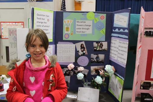 31 Best 4th grade science projects images | Science Fair ...  |4th Grade Science School Projects