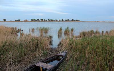 Barca varada. Laguna de les Olles
