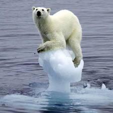 Resultado de imagen de calentamiento global causas