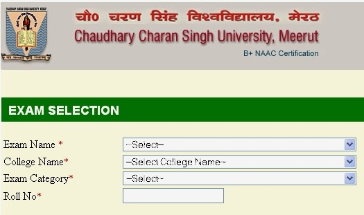 How to Correct CCS University Online form and Fee Chalan