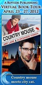 Guest Post and Giveaway: Country Mouse Blog Tour