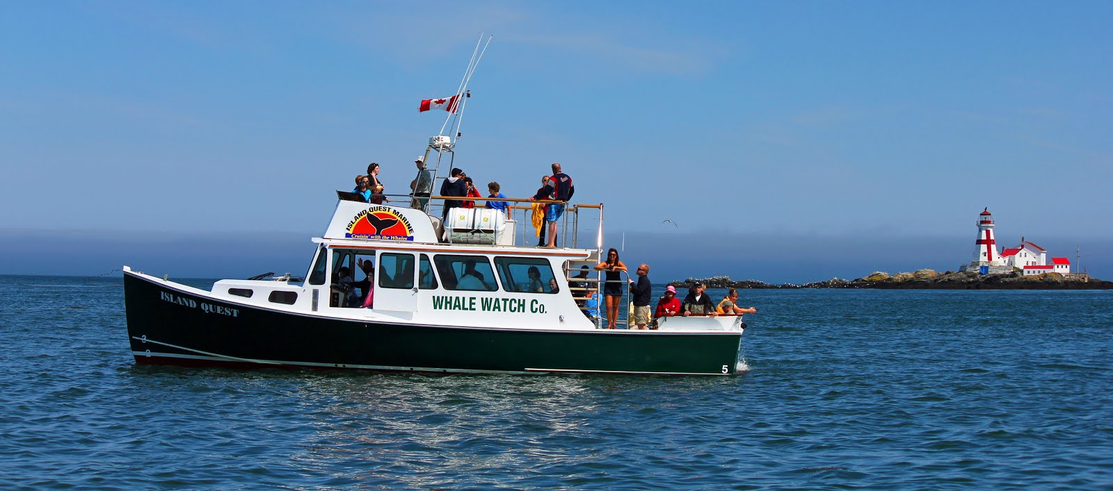 Island Quest Marine - Bay of Fundy Whale Watching