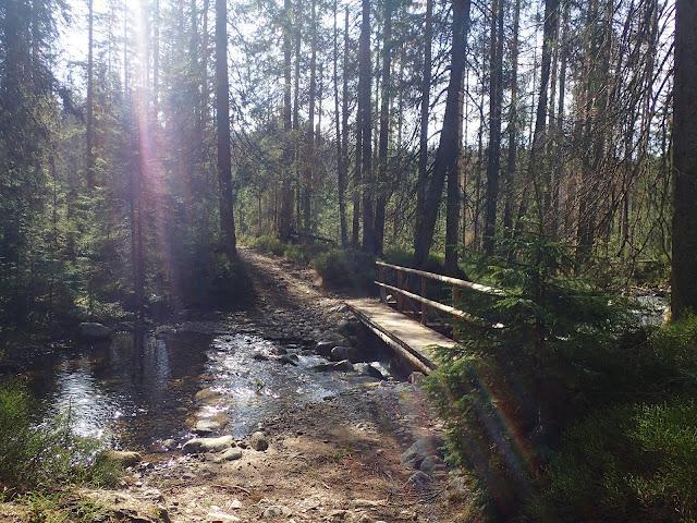 Jeden z mostków (Pańszczycki Potok)