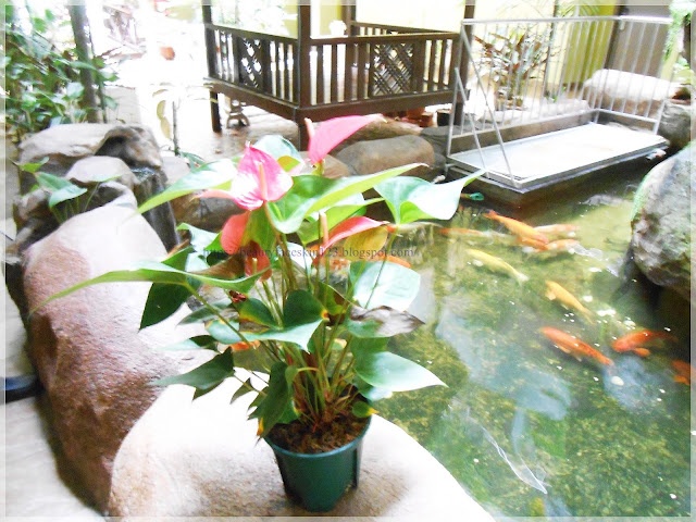 Melang Inn Hotel,Kuala Pilah, Negeri Sembilan, Malaysia
