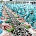 Tuyển lao động nam chế biến thực phẩm Nhật Bản tháng 02/2017