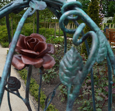 Alnwick Garden, Garden of Fairy Tales - a rose