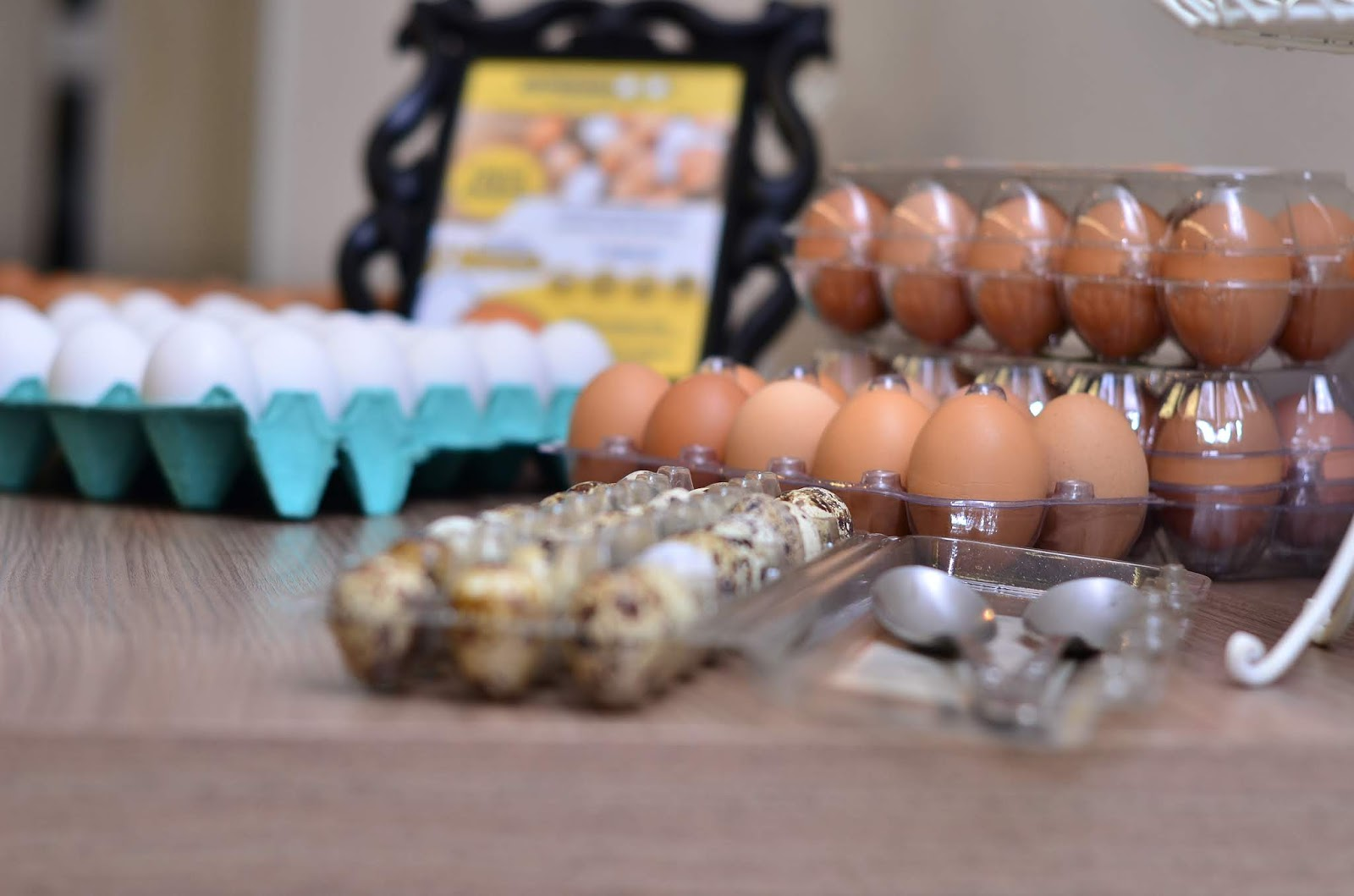 """Sem crise: Empreendedor brasiliense inova com o """"Netflix dos ovos"""""""