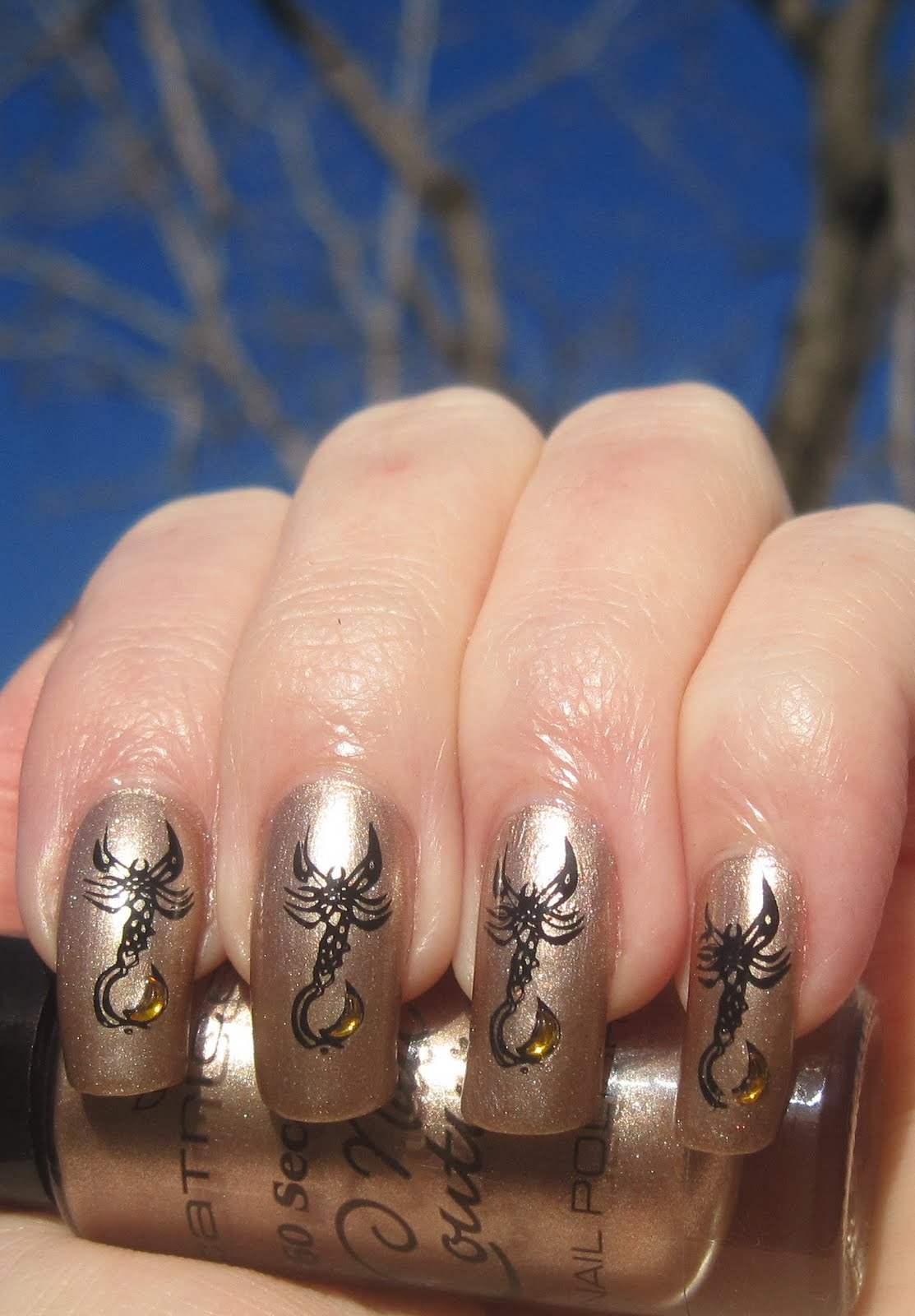 Painted Lady Fingers: Moon in Scorpio: Catrice Sophisticated