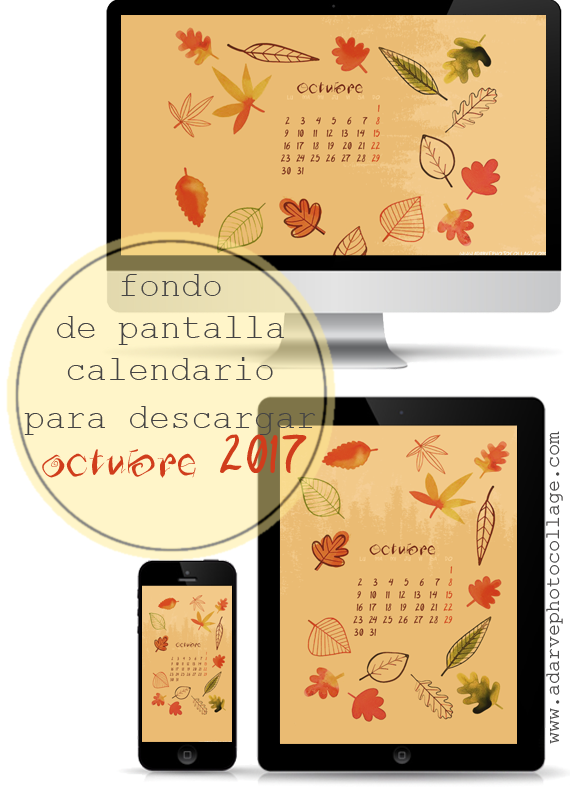 #freebies #wallpapers #fondodepantalla #otoño