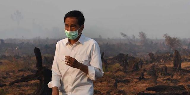 Presiden Joko Widodo saat turun ke lokasi kebakaran hutan dan lahan