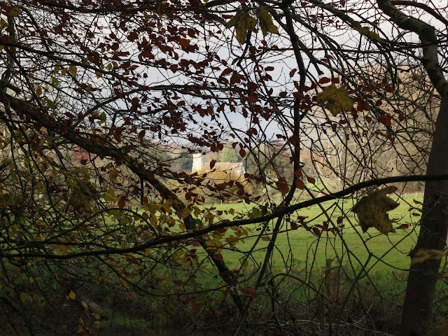 St Martin's Church, glimpsed in the distance between the branches of trees