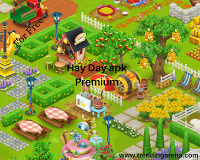 Hay Day Mod Pro Premium Cracked APK
