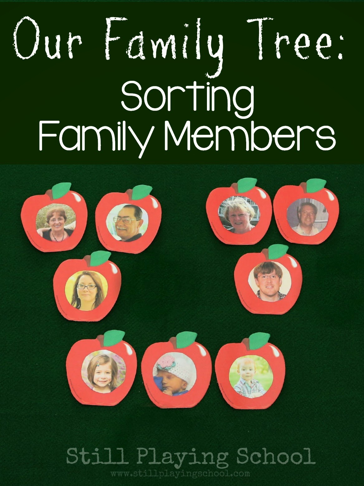 Our Family Tree Sorting Family Members