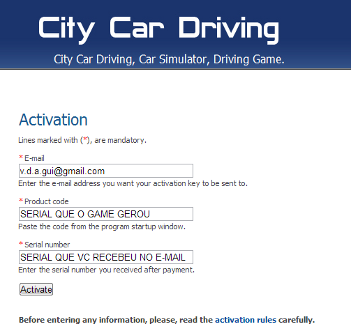 City Car Driving   Serial Key