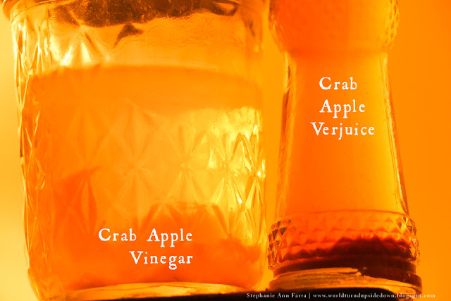 Colonial recipe crab apple verjuice