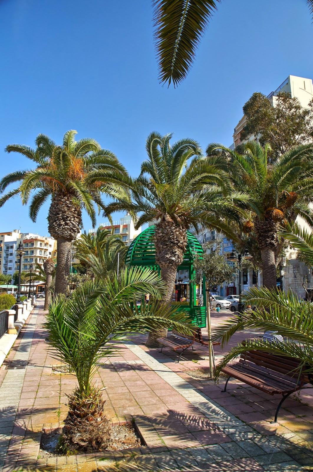 palmy Malta wakacje w Europie