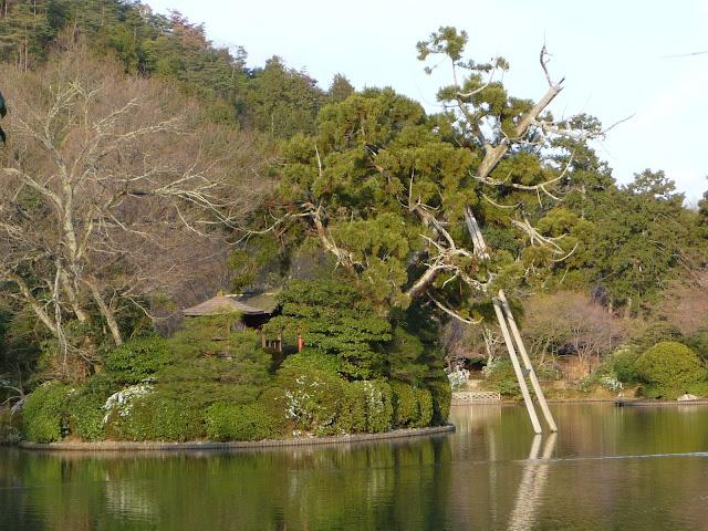 bassin japonais