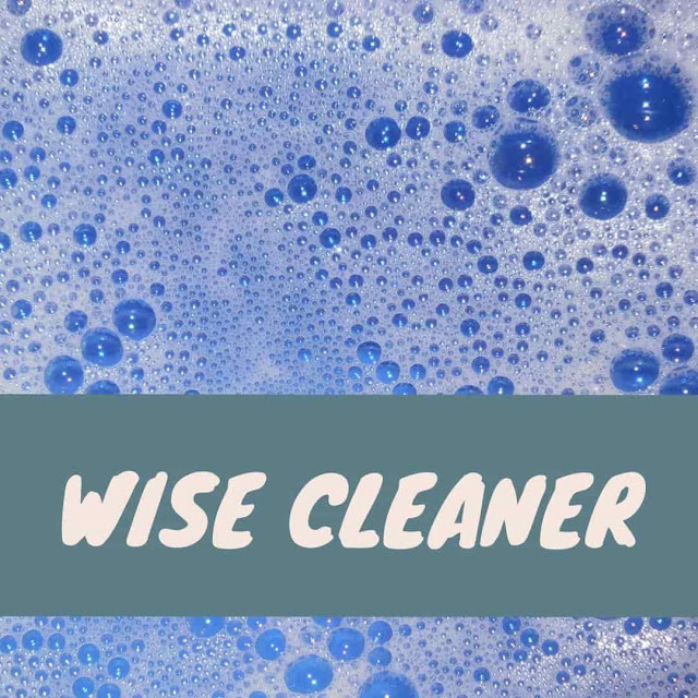 Wise Cleaner DIY Kit review and recommendation