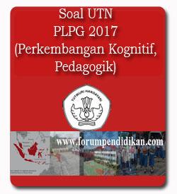 Soal UTN PLPG 2017 Materi Sumber Belajar Perkembangan Kognitif Peserta Didik