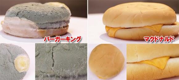 「マクドナルド ハンバーガー 腐らない」の画像検索結果