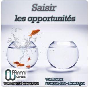 https://www.mental-waves.com/produit/saisir-les-opportunites/?ap_id=laotzu75