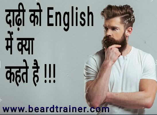 Dadhi in English दाढ़ी को English में क्या कहते