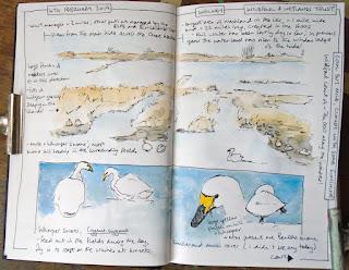 Nature journalling