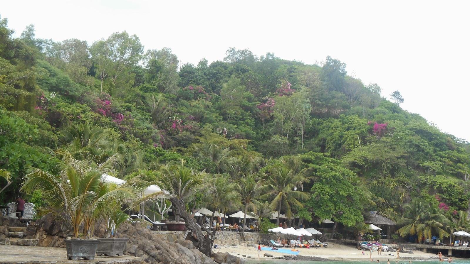цветущая гора острова Хон Нео