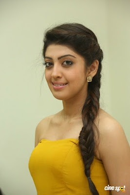 Pranitha Subhash braided hairstyle