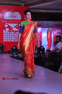 South Indian Celebrities Pos at Love For Handloom Collection Fashion Show  0068.jpg