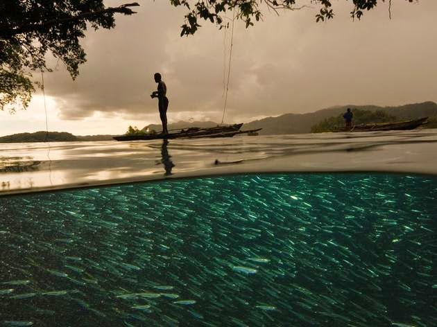 الصيادين وعالم الماء تحتهم (إندونيسيا). الصورة من قبل ديفيد دوبيليت David Doubilet