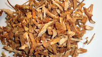 Obat osteroporosis herbal