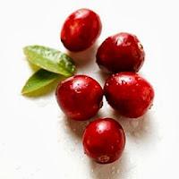 Health Benefits of Forever living Aloe Berry Nectar