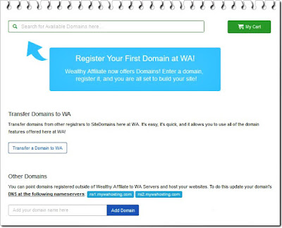 wealthy affiliate domains