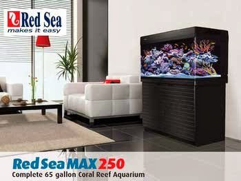 Red Sea Fish ARE40130 Max 250 Reef Tank for Aquarium, 66-Gallon, Black