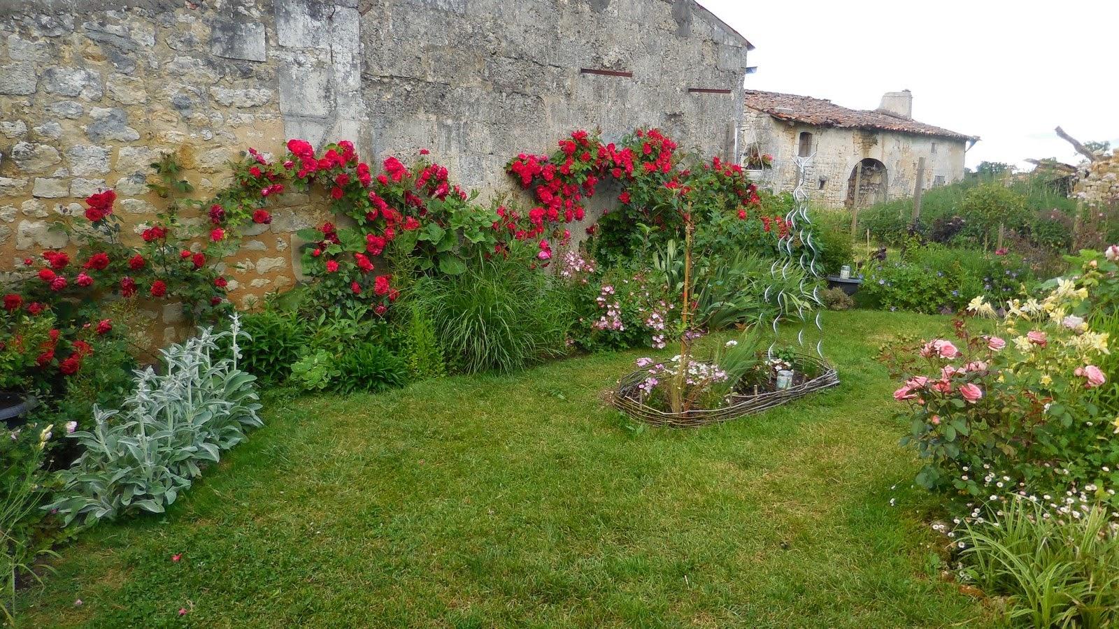 Cagouille 39 s garden des roses et des fleurs - Taille des rosiers apres floraison ...