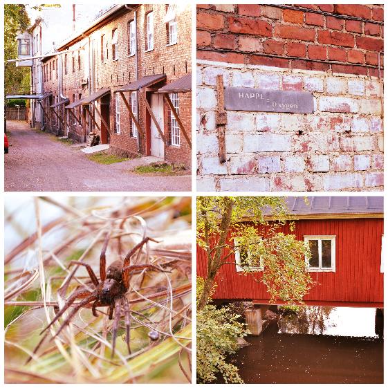 Saippuakuplia olohuoneessa- blogi, kuva Hanna Poikkilehto, Kellokoski, Ruukki, Valokuvaus