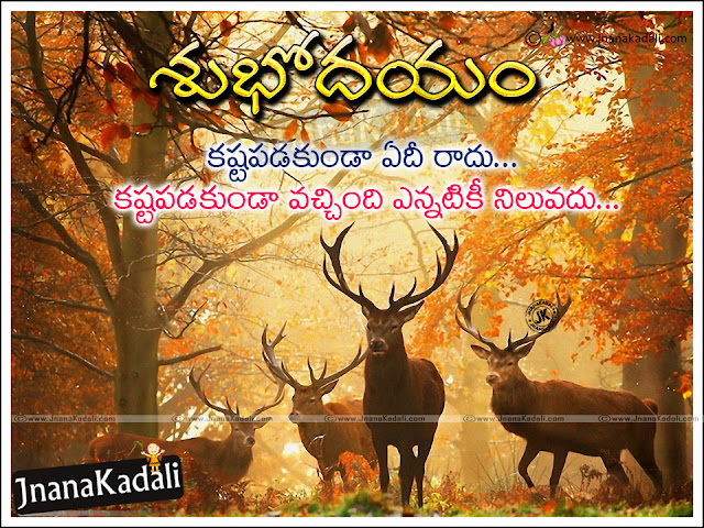 good morning quotes hd wallpapers, telugu subhodayam wallpapers, daily telugu inspirational messages