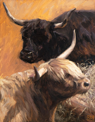 An oil painting of Black and Tan Highland Cows by artist Shannon Reynolds © 2016