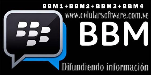 Blackberry Messenger, Multi Section