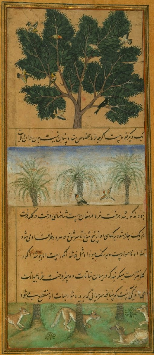 Persian manuscript miniature of date palms, birds and dogs