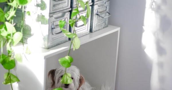 vom koffer ins regal titatoni. Black Bedroom Furniture Sets. Home Design Ideas