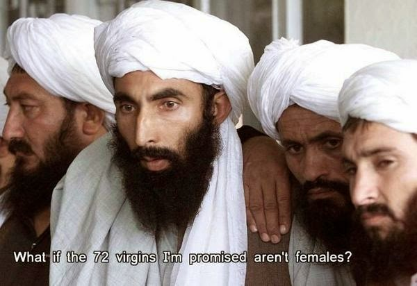 Funny Muslim meme - what if the 72 virgins I'm promised aren't females joke picture