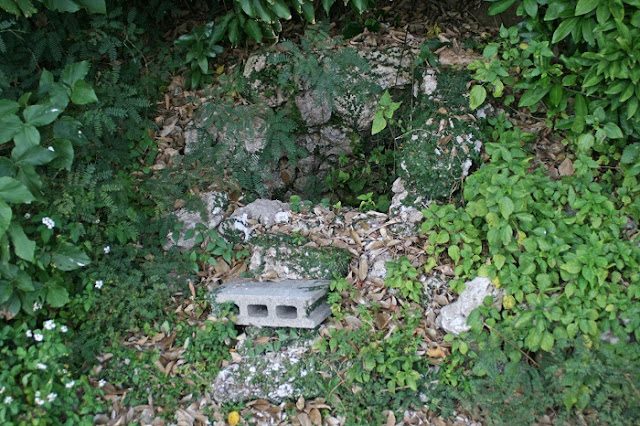 照屋グスク手前にあった井戸跡の写真