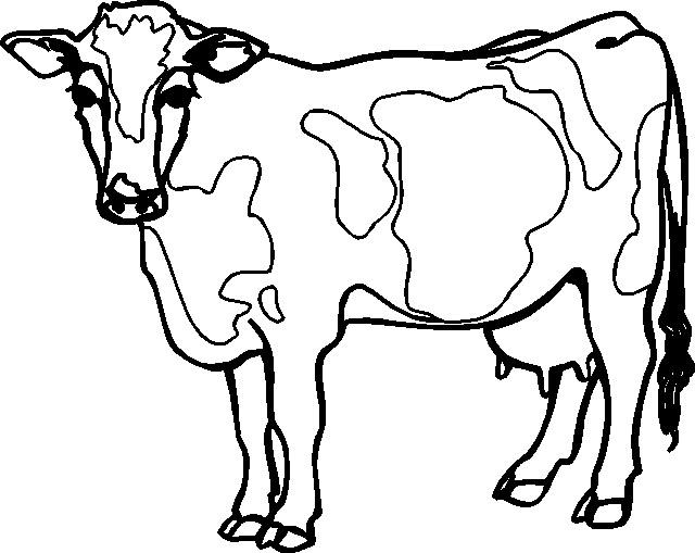 Immagini di mucca da colorare - Dessin vaches ...