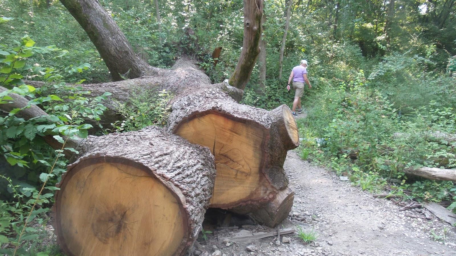Hike Starved Rock: Vermillion River Area- Matthiessen ...